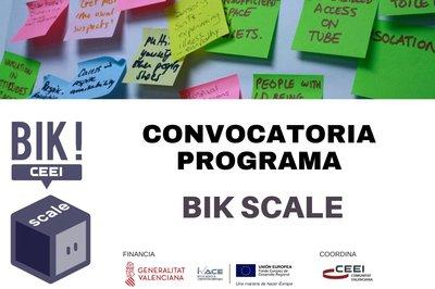 BIK Scale